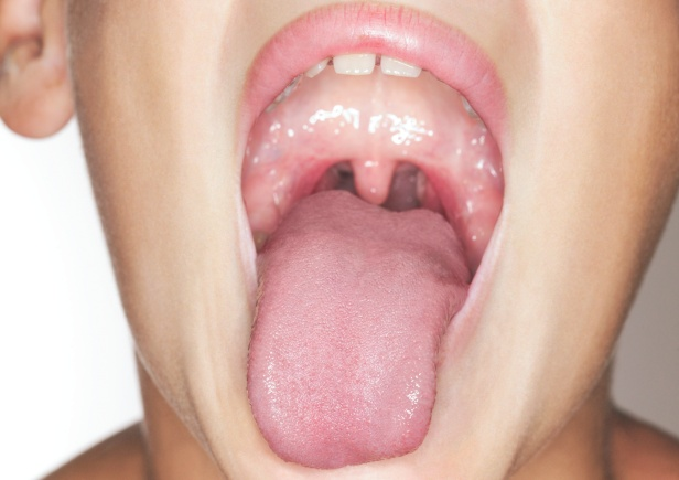 what are tonsils for how it works