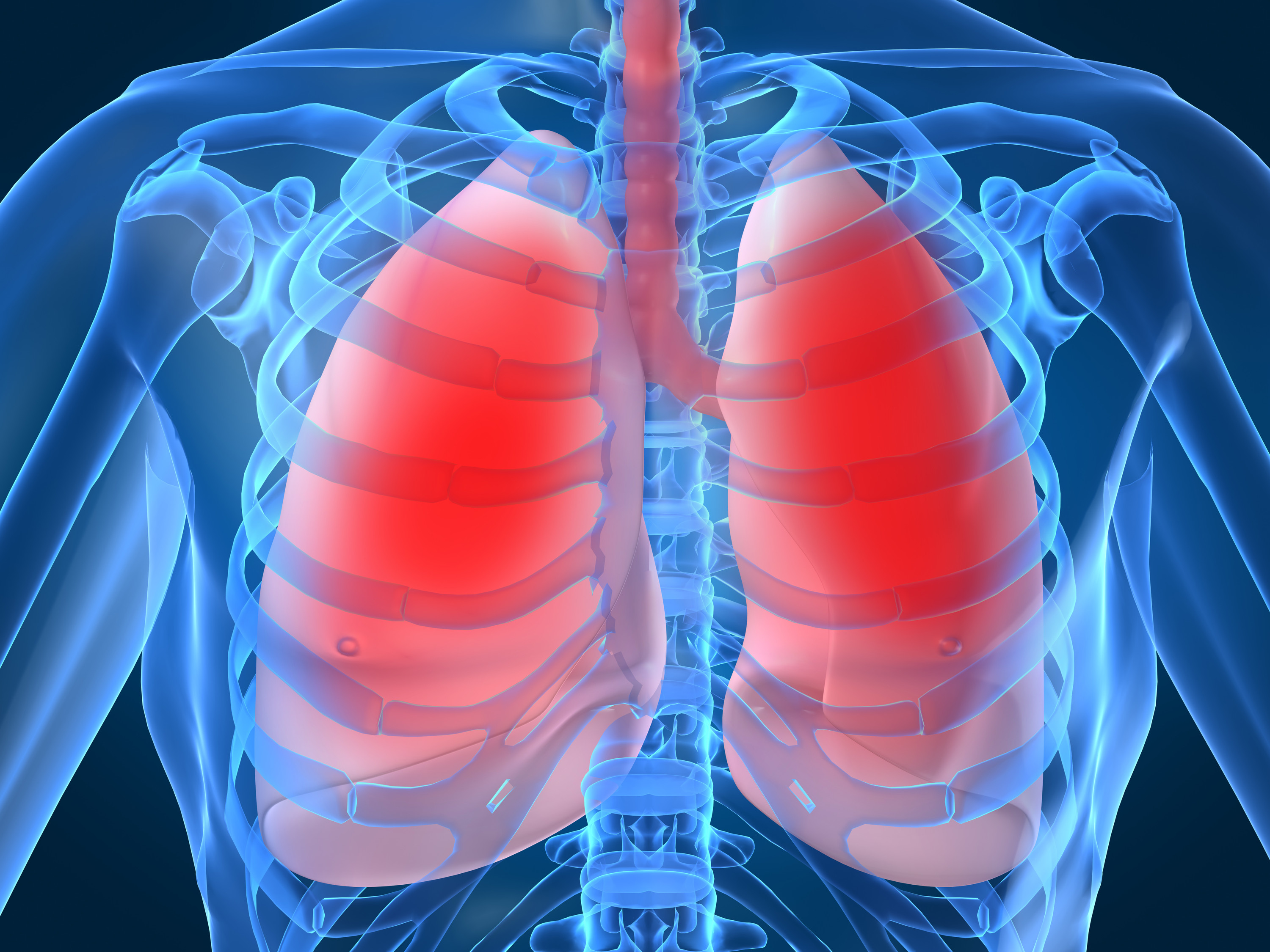 Top 5 Facts: Respiration | How It Works Magazine